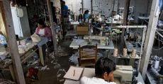 Brasil está próximo de ter risco extremo de trabalho escravo