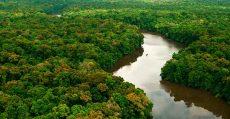 Governo extingue reserva nacional de cobre da Amazônia para liberar extração