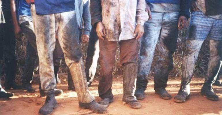Rosa Weber suspende portaria que libera trabalho escravo
