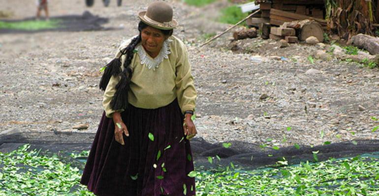 Mulheres e trabalho na América Latina