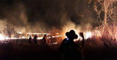 Solidariedade ao MST e às famílias vítimas de incêndio criminoso no Ceará
