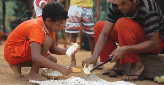 O gosto amargo do trabalho infantil e do trabalho escravo